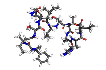 bactericidal: Teixobactin es un antibi�tico recientemente descubierto, activo contra la mayor�a de bacterias gram-positivas tales como Staphylococcus aureus, Mycobacterium tuberculosis y muchos m�s. Foto de archivo