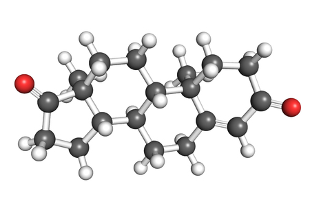 Androstenedione molecule, rotating ball and stick model, seamless loop
