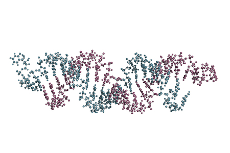 small interfering RNA bound to a messenger RNA, ball and stick model. siRNAs are synthetic RNA interference tools used for inducing temporary reduction of mRNA expression. Stock Photo