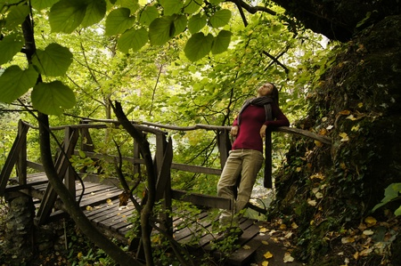 Beautiful young woman looking at the crown of an ancient tree on a wooden bridge Stock Photo - 10967890