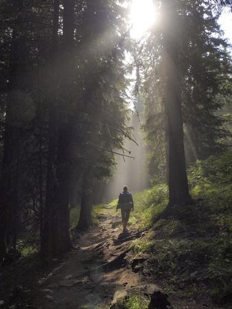 Vrouwelijke wandelaar lopen onder de stralen van de ochtendzon in het bergbos