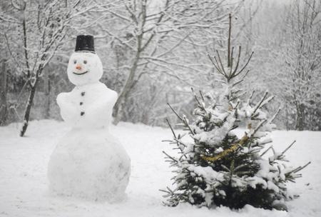 neige qui tombe: La neige qui tombe sur un bonhomme de neige et un arbre de Noël