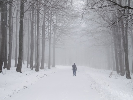 alone person: Female walking through snowy forest on foggy day