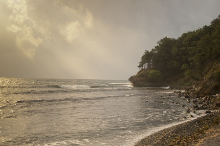 unspoilt: Waves lap against a stony beach in an unspoilt cove where forest meets the sea Stock Photo