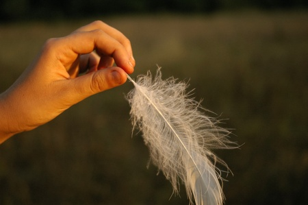 Teenage female hand holding a gentle white feather on the light of the setting sun photo