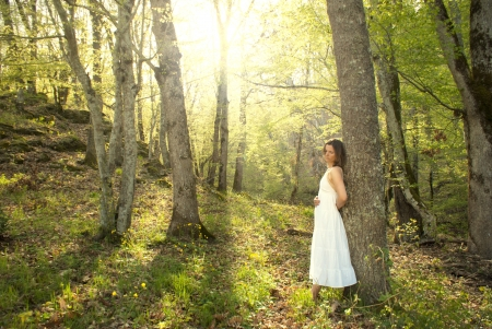 Young woman leans on a tree in a fairytale mystical forest photo