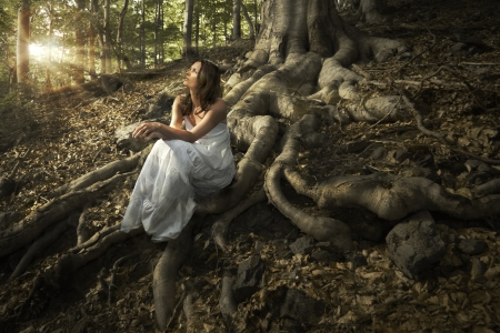 fantasy landscape: Lovely young lady wearing elegant white dress enjoying the beams of celestial light on her face sitting on the mighty roots of an ancient tree in enchanted woods
