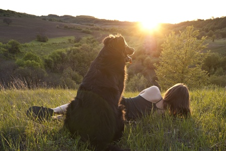 Girl and her dog rest in a meadow photo