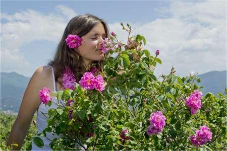 bulgaria girl: Beautiful girl smelling a rose in a field of roses