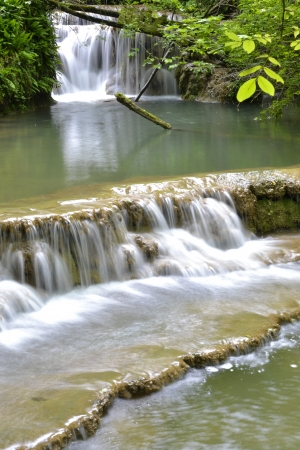 green vegetation: Pure waters of a waterfall surrounded by lush green vegetation