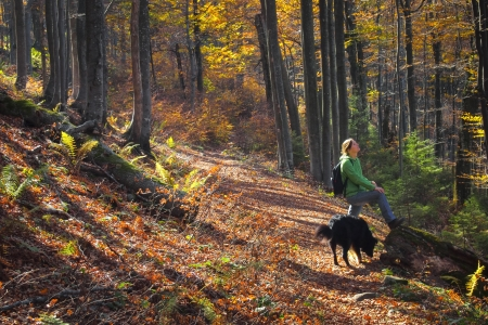 A girl enjoying the colorful autumn forest in the mountains with her dog photo