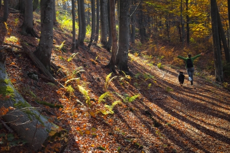 A girl running with joy in colorful autumn forest in the mountains photo