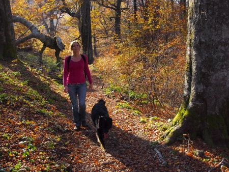 A girl walking enjoying the rich colours ofl autumn forest in the mountains photo