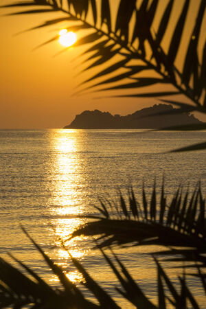 Beautiful golden sunrise on a greek island framed by palm leaves silhouettes. photo