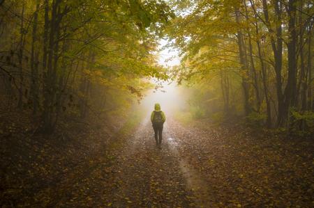 Soñadora camino de bosque otoñal que le invita a un viaje mágico a través de las maderas.