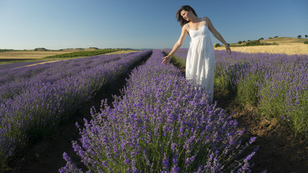 lady hand: Beautiful young woman wearing a white dress walking in the middle of a lavender field in bloom. Stock Photo
