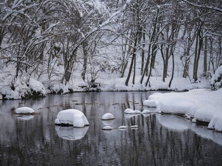 Trees covered with snow reflecting on the surface of the river. 版權商用圖片