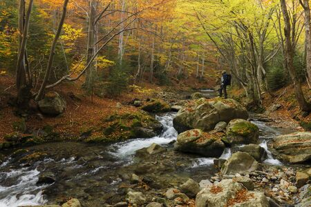 Young man exploring the wilderness enjoying the beauty of forest in autumnal colors 版權商用圖片