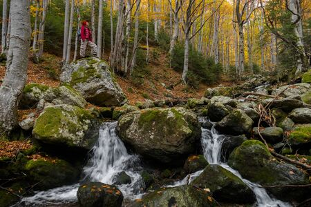 Young woman hiker standing on a big rock in the forest by a stream admiring the peace and beauty of autumn. 版權商用圖片
