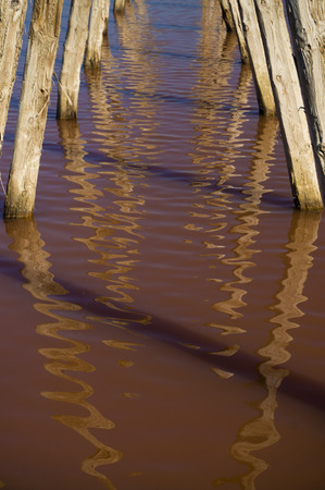 evaporate: Old posts reflecting in the bright red salty water of the salterns near Burgas, Bulgaria.