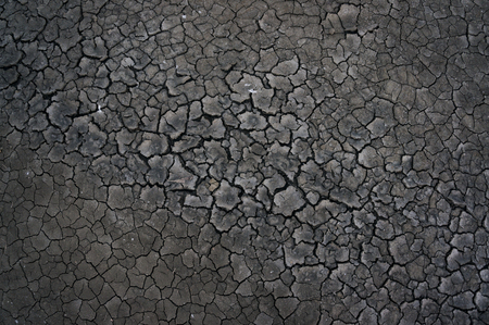 Grey mud backed in the sun creating a network of cracks.