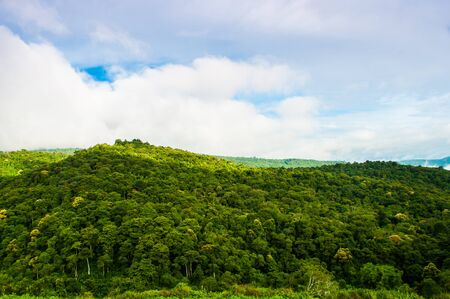 cropland: Green mountain in thailand.