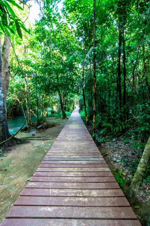 huay: Wood walkway on a wild park Waterfall Huay Mae Kamin