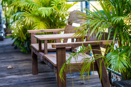 hause: Wooden chair in garden with nature