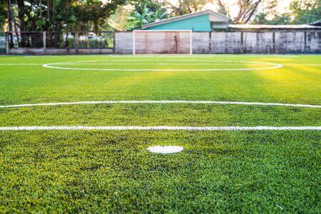 grass field: Soccer field artificial grass