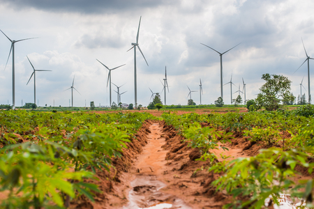 windfarms: Group Large wind turbines in Thailand