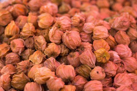 gooseberry: Cape Gooseberry Stock Photo