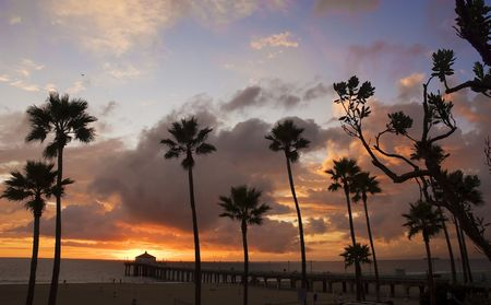 extending: Silhouette of palm trees in a beach scene with pier extending into ocean and clouds gathering during sunset.