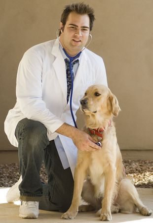 Handsome young vet with Golden Retriever Stock Photo - 1781679