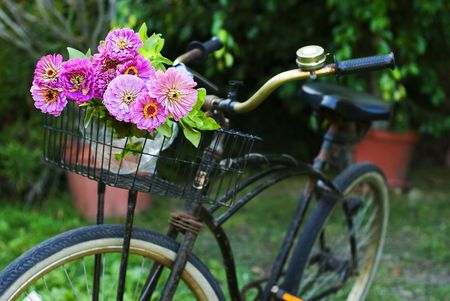 old black bicycle with flowers in the front basket,parked in the garden
