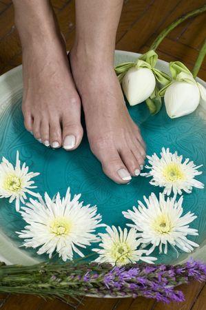 Feet enjoy a relaxing aromatherapy foot spa with lotus flowers stock feet enjoy a relaxing aromatherapy foot spa with lotus flowers stock photo 5893738 mightylinksfo