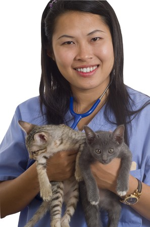 Woman veterinarian holding 2 kittens