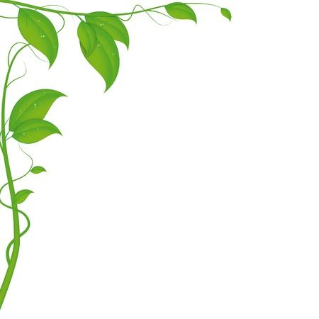 작은 물 방울과 잎 배경
