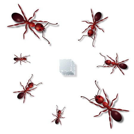 red ant: Ants and sugar Illustration