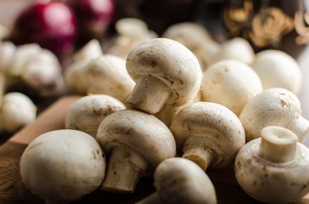 advertisment: Mushrooms raw home-grown, dark lighting, advertisment place Stock Photo
