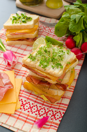reuben: Reuben sandwich with cabbage, beef and spicy dressing, microgrens, fresh herbs and flower Stock Photo