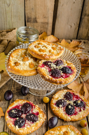 prunes: Traditional Czech cake with plums and prunes with milk