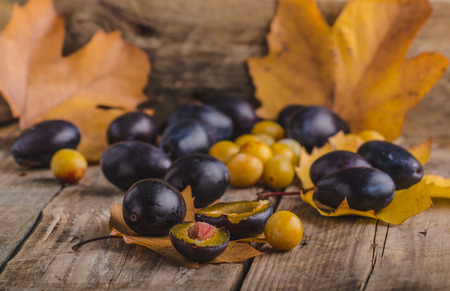 adds: Freshly picked and washed plums from bio garden in basket