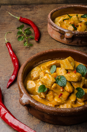 indian curry: Chicken curry