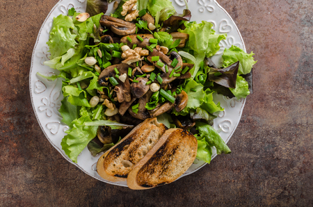 Mushroom salad with walnuts with baguette, lots of herbs inside, realy bio healthy