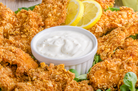 tenders: Chicken strips with delish garlic dip, food photography