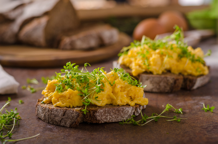 Scrambled eggs, wholegrain bread with fresh microgreens on top Stockfoto
