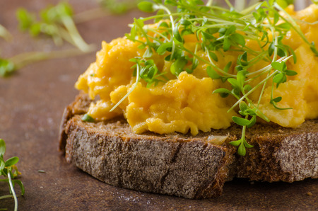 Scrambled eggs, wholegrain bread with fresh microgreens on top Stock Photo