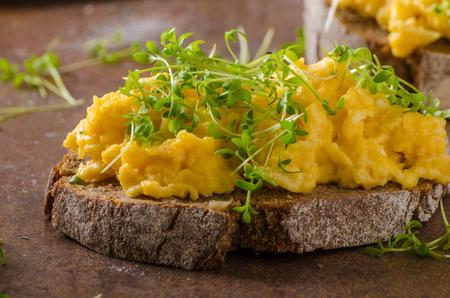 Scrambled eggs, wholegrain bread with fresh microgreens on top Stock Photo