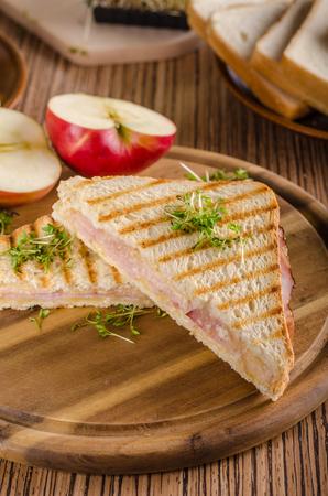 Pain grillé au jambon au fromage Panini, pomme fraîche, sandwich au dos, photographie culinaire Banque d'images - 95456340