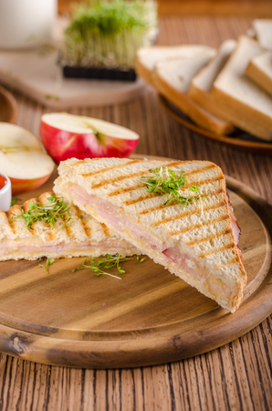 Panini cheese ham toast, fresh apple, back to shool sandwich, food photography Stock Photo - 95533052